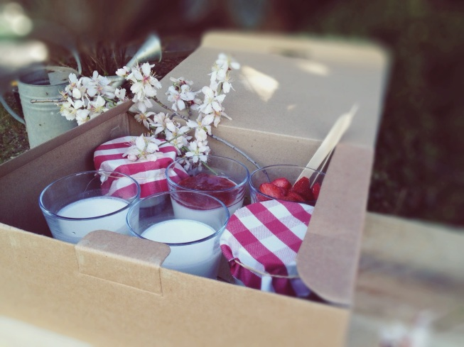 Caja de yogures